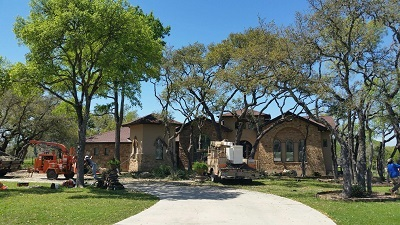 Tree Trimming Service in Kerrville, TX
